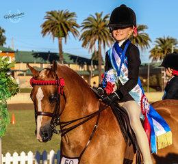 Willow Scotson Champion Rider with Cherrington Royal Ambassador