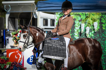 Isabella Anderson and Dunelm Fashion Star - Champion Owner Rider Show Hunter Pony