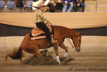 Mick Taylor from Tatura in Victoria  rode Yulgilbar Roy N Reckless by Playboy Roy, to eigth place in the Intermediate Open Futurity Ist Go Round and 14th place in the Open Futurity, scoring 137.