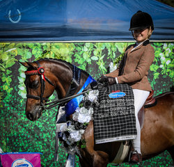 Isabella Anderson and Mandaley Lord Lichfield - Champion Owner Rider Large Pony