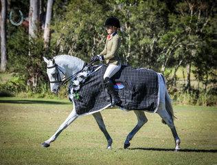 Jessica Fedrick and Ellabre Debonair -Champion Owner Rider Show Hunter Galloway