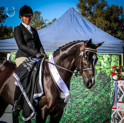 RS Supremacy - Owner Rider Karen Shaw - Runner Up Intermediate Hack