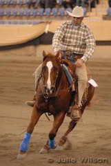 Peter Bartolo from Bringelly in NSW rode Uncle Kracker in the Open Futurity for a 0 score.
