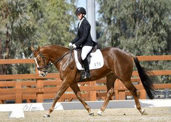 Long Tall Sally ridden by Chloe Nesci.