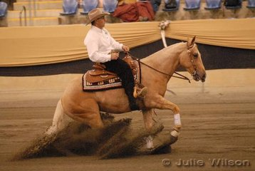 Graham Cooper from Marulan on the Hume Highway in NSW, rode Rob Lawson's, Hollywood Double Rose in the Open Futurity to score 131.5.