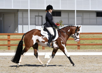 Koolkash and Tennelle Ter Rahe in Senior Horse Dressage.