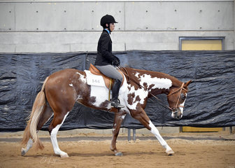 MPH Simply The Best ridden by Tiffany Walter.