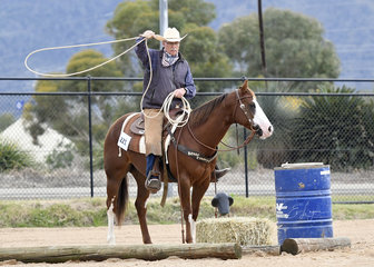 Rod Shaw riding Hello Diamond Sparkles in the Ranch Trail.