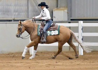 Alison Conolan riding  Pekarra High Noon