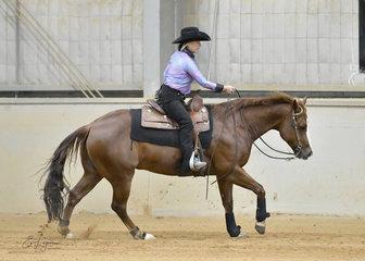 Helen Weeks riding ME Kings Smart Ace