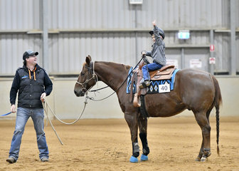 Lachlan McDonald riding Termite Grounded.
