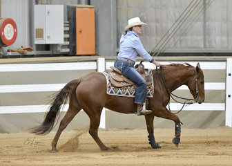 Susan Learey riding Miss Hollywood Chex