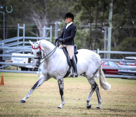 Rolex owned by Michelle and Kaitlin Labahn and ridden by  Adam Oliver