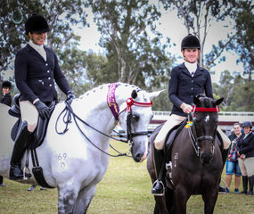 Stable mates from Universal stables taking out the champion and reserve champion hack
