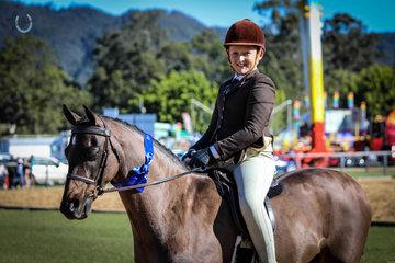 Farleigh Wessex Sabastian Lucas Newcomer hunter Champion novice pony