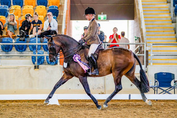 """Riley Kent, aboard Louise Barton's """"Faberge"""" was declared Champion in one of Queensland's toughest fields, the Tia McKenzie Small Hunter Hack class."""