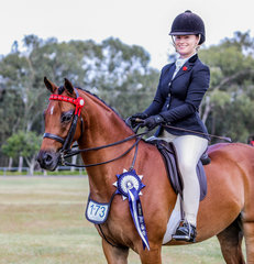 Regal Monarch of Astral exhibited by Caitlin Senter, sashed Reserve Champion Preliminary Large Show Pony