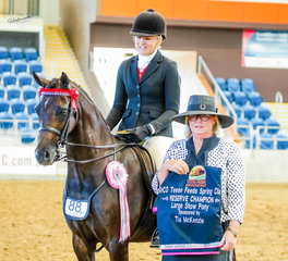 The Tia McKenzie Large Show Pony Reserve Championship was won by Royalwood Choir Master, ridden & owned by Tyler Buchanan & Bobby Hammet