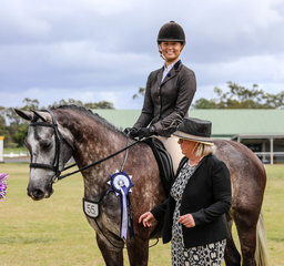 With owner Emily Wonka currently out of action, Mikayla Van Kampen stepped on board Dicavalli Royal Gistella to be awarded the Reserve Championship in the Elise Cameron Preliminary S