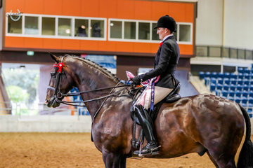 Rebecca Crane, aboard her own CJP Quaterstern, gaining her Grand National ticket with the Rider 30 years & over Championship