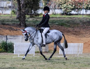 Redlands Stables Vera Wang ridden by Centaine Latham