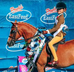 Cherrington Royal Ambassador  Owner and Rider Willow Scotson  Champion Childs Medium Hunter Pony