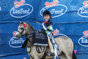 Clean sweep for Chanelle Lovelock and Bordershow Magic Mike winning Champion  Childs small pony, Champion small pony and Champion Rider under 12yrs