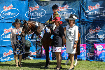 Childs Large hunter pony went to Kyldar Script and Bronte Raymont
