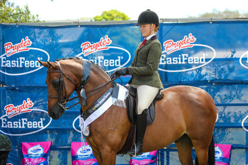 Royal command of Sefton and Kaitlin Labahn-Meyland 3rd in the small hunter galloway