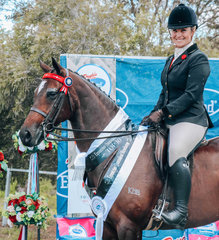 Kirsty Harper Purcell rode Jo Uppingtons lovely  Kensington Tuscan Diamond for 3rd place in the large Galloway
