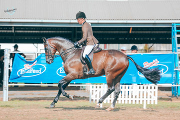 Riley Kent on Bailee Richdale's First impressions Galloping his way to Runner Up Small Hunter hack
