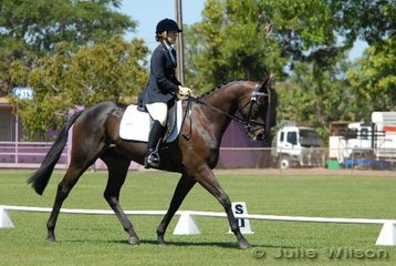 Scoring 55.8% in the Official Novice, Juanita Porter riding Lemrac's Laureate. If you think the name is familiar it is because Juanita also started the National Champion Hack, Lemrac's Dancing Poet.