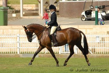 Robriella Robson placed third in the Hack 15-15.2hh riding the warmblood, Belcam Galina.