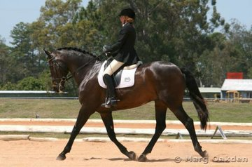 The Warmblood/Thoroughbred gelding, Astra-Khan (Kool Khan x Dolly), & Linda Chirnside looking the goods in the Elementary 3.2. Division B.