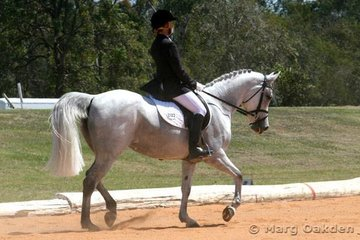 The Arabian mare, Stapylton Park Dalliance (Alii* x Waterford Natashia), & Veronica Mortimer sitting pretty in the Preliminary 1.2 Division A.