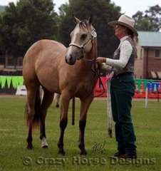 Linda Grey's entry in the ancillary mares class- Freckles Lil Princess