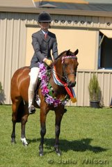 Well-known and successful Tasmanian rider, Anne McMinn rode her own 'Lynlea Pape Boy', bred by Anne Smiley, to take out the Large Pony Championship and go on to be declared Supreme Ridden Exhibit.