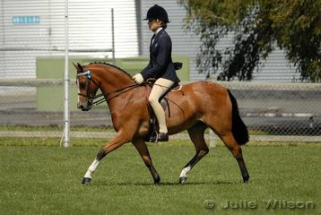 Frequent Tasmanian visitor, Jessica Stalling from Tahmoor in NSW rode Kellie Parish's 'Homevale Kit Kat' to take third place in the Open Pony 12.2-13hh class.