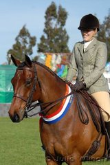 Sarah Smith took out the Show Hunter Galloway Championship with her 'Havlock II'.
