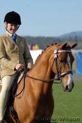Samantha Smith and her 'Roystonville Oliver' look to be enjoying the 2006 Royal Launceston Show.