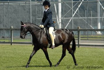 Jessie Charley rode her own 'Fairfield Overture'  to take fifth place in the 13-13.2hh Open Pony class.