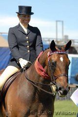 Fiona Clark from Launceston rode her 2005 Champion Hack, 'Alluring' to claim the 2006 Reserve Champion title.
