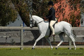 Lucinda Fraser was just out of the placings in the Heavyweight Pony class riding 'Woodbury Park Fairtime'.