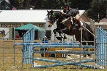Carley Cook and 'WP Casanova' took fifth place in the C & D AM5 on the first day of competition at the Royal Geelong Show.