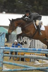 Angela Green rode her 'Dutch Opulance' by Dutchman in the C & D AM5 on the first day of the Royal Geelong Show.