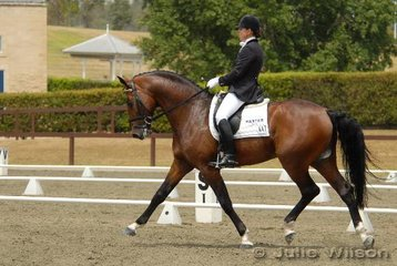 Popular competitor, Christine Crawford from Lochinvar with Elaine Harrison's impressive six-year-old Falkland Victory stallion, 'Northern Simba', seen here competing in the Precision Printing Elementary Championship. Simba was third in the 3.3 with 64.11% and fourth in the 3.4 with 65.14% to claim the Elementary Reserve Championship.