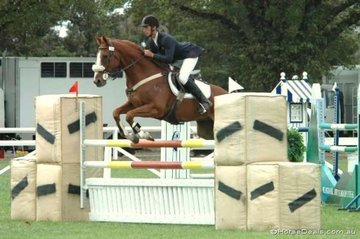 Randall Jolley from South Australia took fourth place in the Sale and District Agricultural Society C Grade riding his 'Mr Bart'.