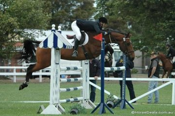 Greg Mason's 'Marquis Sapphire' makes a big effort over this oxer in the Sale and District C Grade Two Phase. So much so that he has attracted the attention of 2004 Australian Showjumping Champion, Robert Agnew seen just in front of the horses' head..