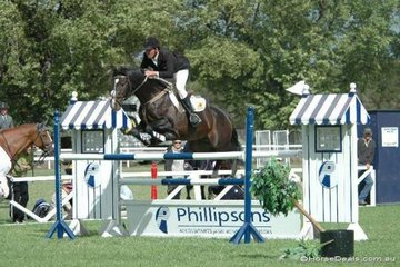 South Australian captain, Anthony Thomas had multiple rides in the Saddleworld 1.35m  One Round class. He is seen here with 'Belcam Aircraft' and was placed third with 'Sandstones'.