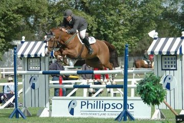 Gerge Sanna demonstrated his signature beautiful style and presentation riding his and Charles Blinkworth's imported gelding, Paratus in the Saddleworld 1.35m class on the first day of the Sale/Australian Showjumping Championships.